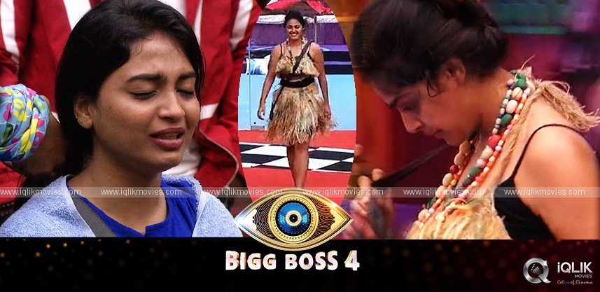 bigg-boss-telugu-4-latest-episode-38-highlights