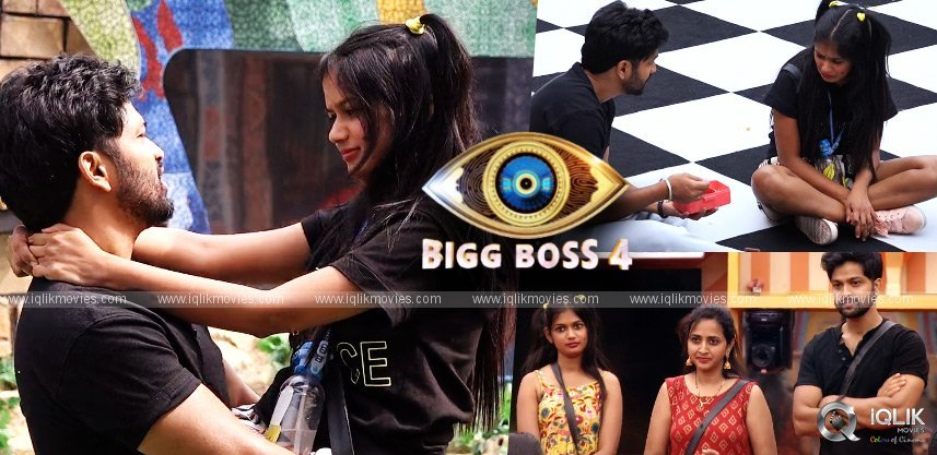 bb4-episode-53-ariyana-sohel-become-the-best-performers-of-the-bb-day-care-task