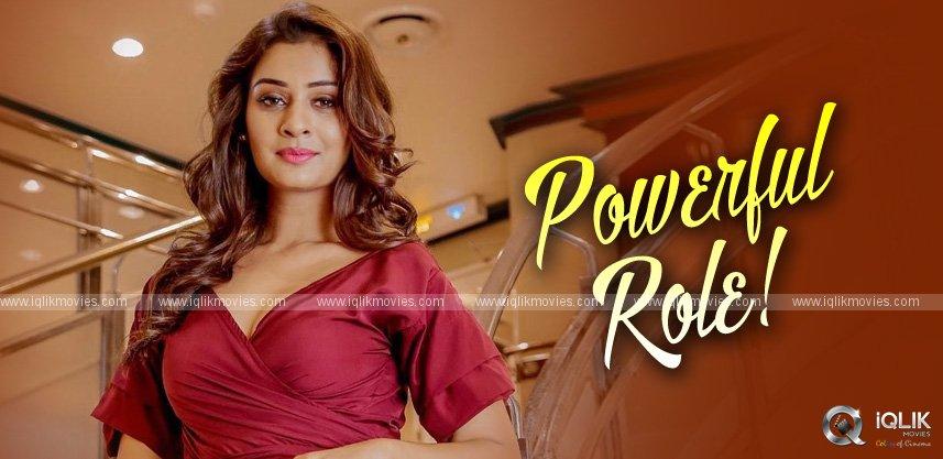 payal-rajput-for-pawan-kalyan-movie