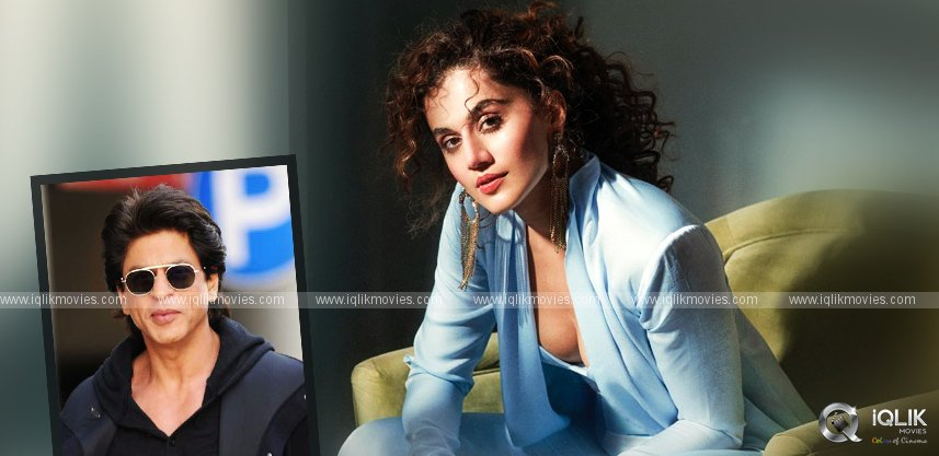 taapsee-grabs-a-golden-chance-with-shah-rukh-khan