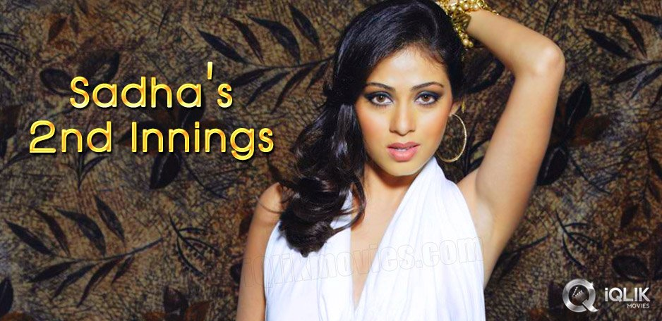 Actress-Sadha-to-start-her-second-innings