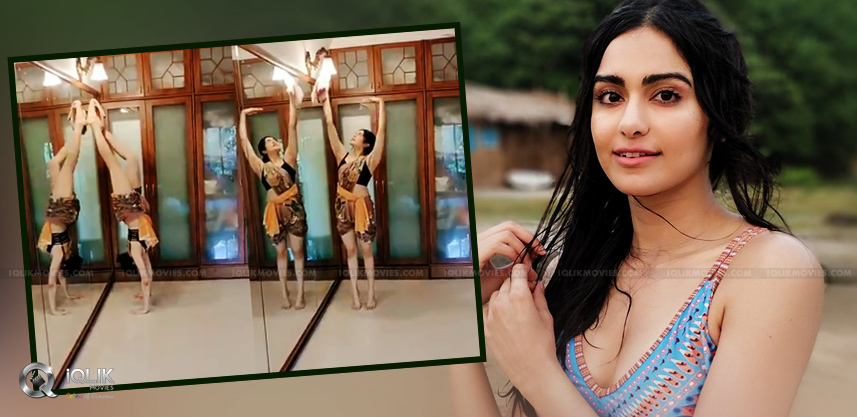 adah-sharma-corona-lockdown-dance-