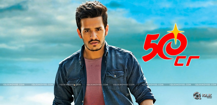 akhil-akkineni-debut-film-business-details