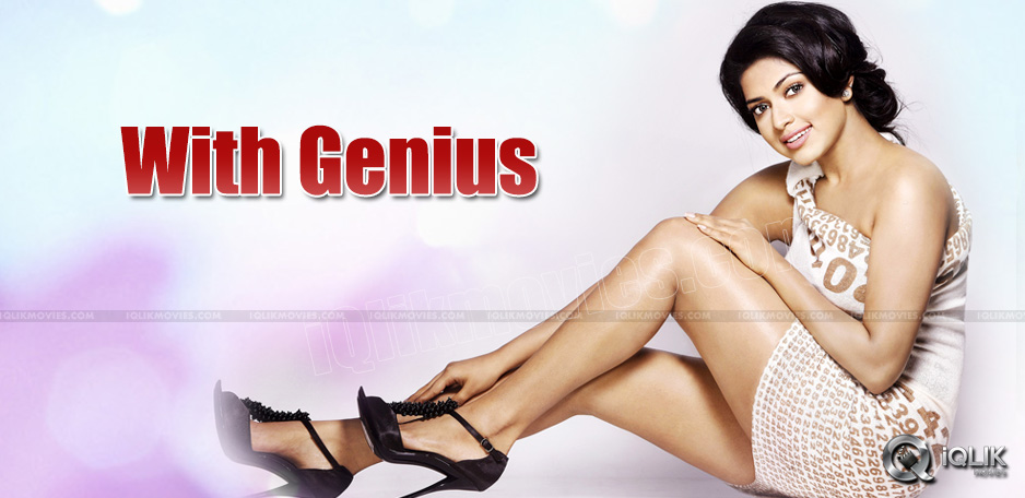 amala-paul-film-with-genius-movie-hero-havish