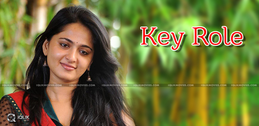 anushka-doing-key-role-kodi-ramakrishna-film