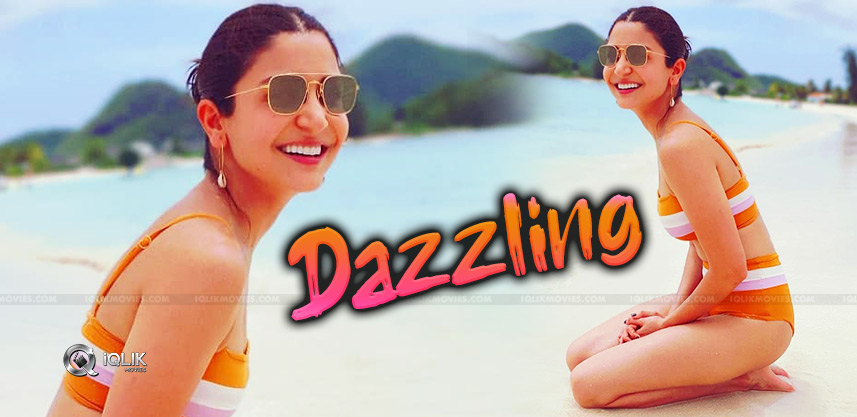 Anushka, The New Bikini Sensation!