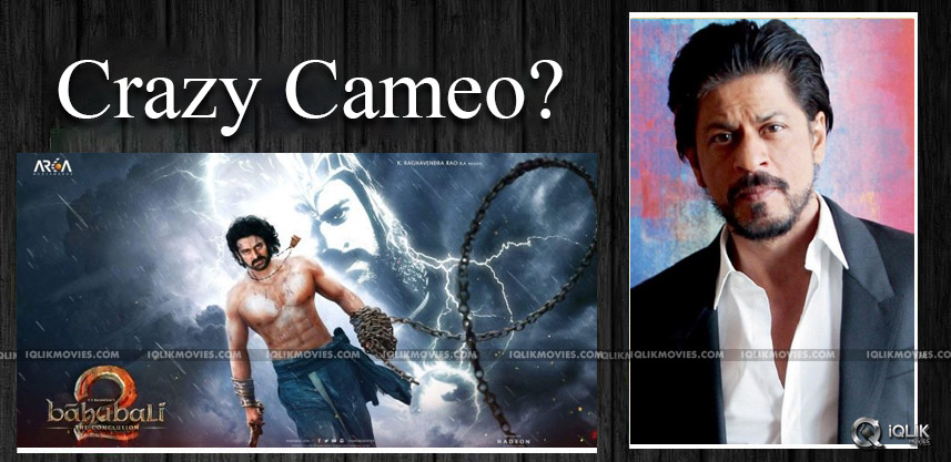 shahrukhkhan-cameo-in-baahubalitheconclusion