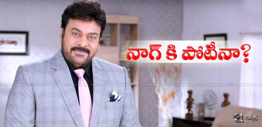 chiranjeevi-gives-competition-to-nagarjuna