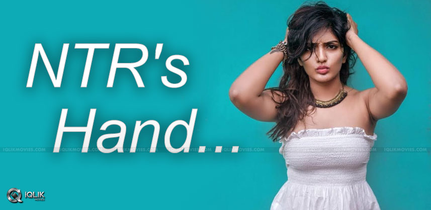 eesha-rebba-role-in-aravindha-sametha-movie