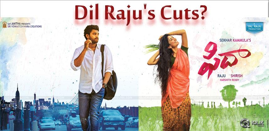 dilraju-edit-suggestions-to-fidaa-details