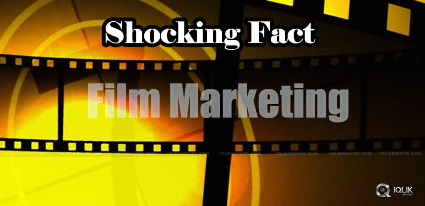 film-marketing-head-more-than-director