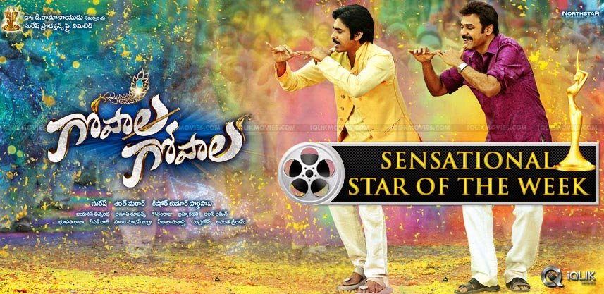 gopala-gopala-is-iqlik-sensational-star-of-the-wee