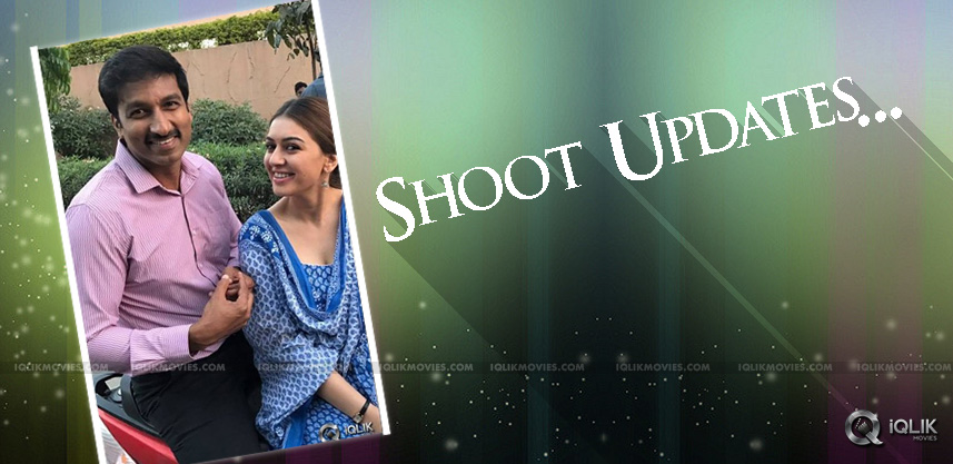 gopichand-hansika-new-movie-shooting-updates