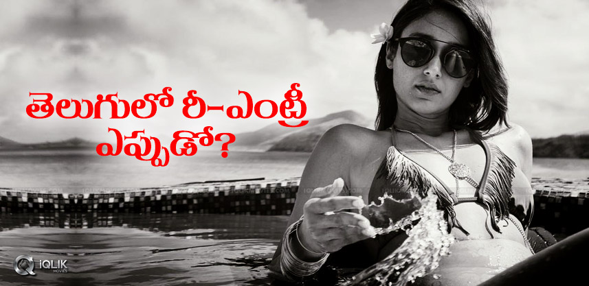 discussion-on-ileana-comeback-to-tollywood