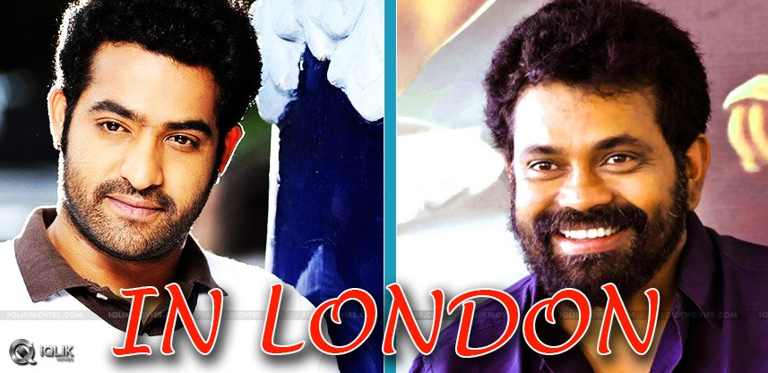 ntr-sukumar-movie-shooting-in-london