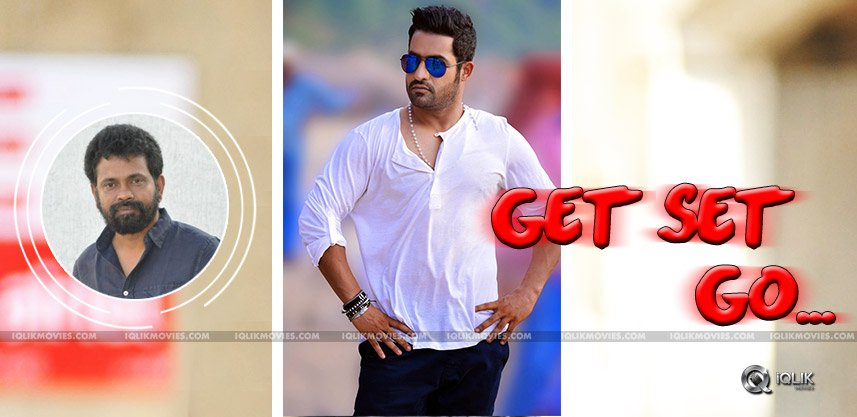 ntr-sukumar-movie-shooting-exclusive-details
