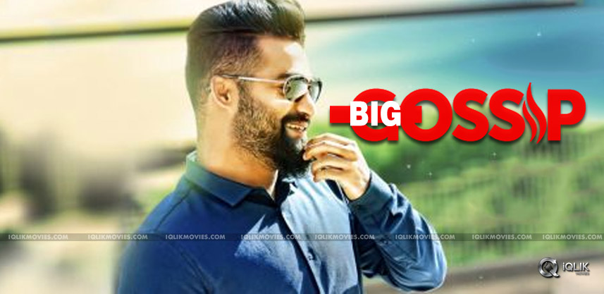 new-gossip-on-jr-ntr-upcoming-film