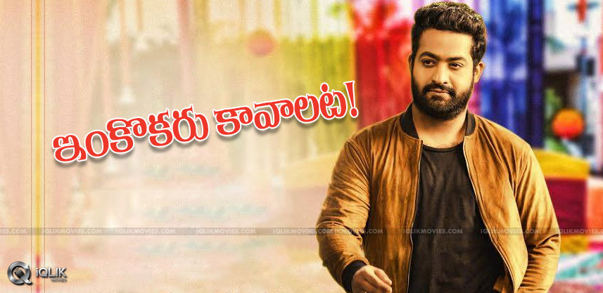 updates-on-heroines-in-jrntr-bobby-film