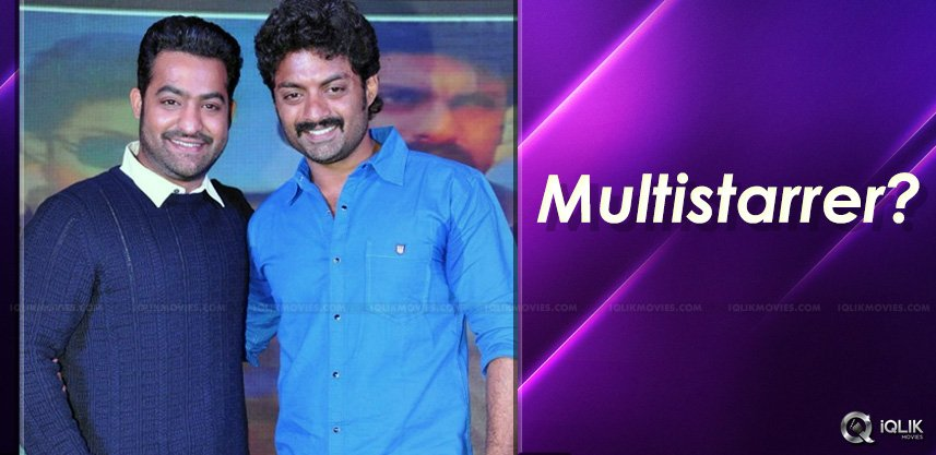 speculations-on-jrntr-kalyanram-film-brothers
