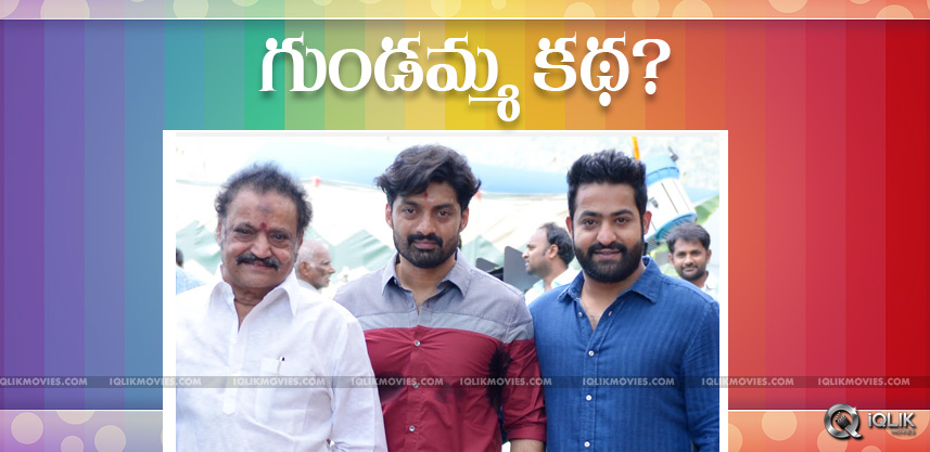 speculations-on-jrntr-kalyanram-harikrishna-film