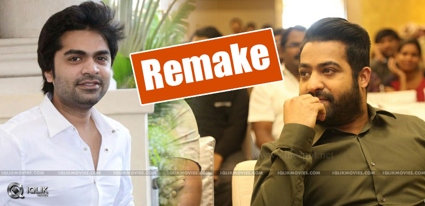 tamil-hero-simbu-to-remake-jrntr-temper-movie