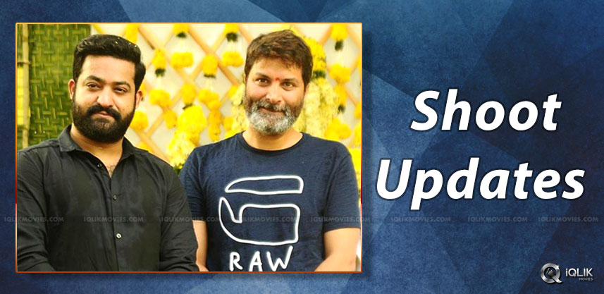 jrntr-trivikram-srinivas-movie-shooting-updates
