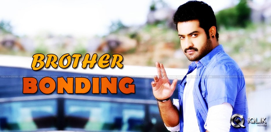 junior-ntr-free-film-for-his-brother-kalyan-ram