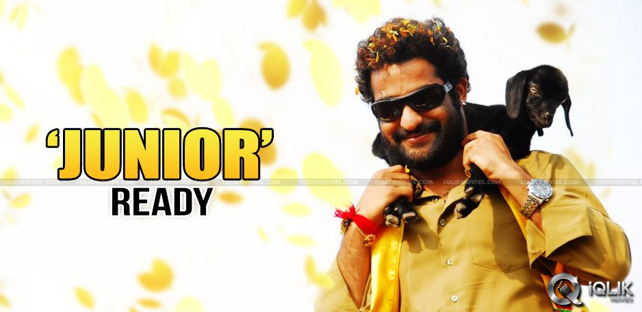 jrntr-getting-ready-for-election-campaign