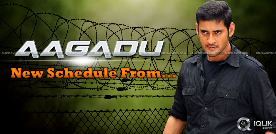 Mahesh-Babus-Aagadu-next-schedule-from