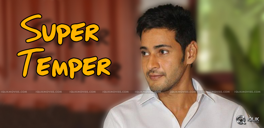 mahesh-babu-appreciates-ntr-temper-movie
