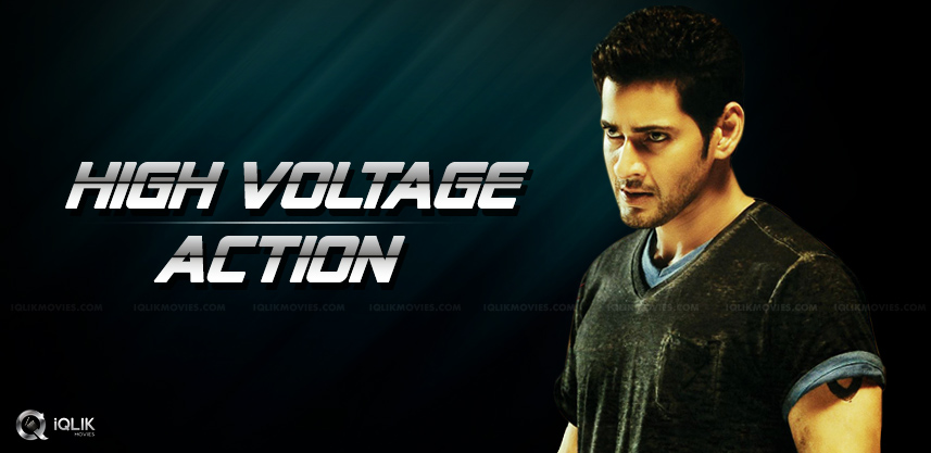 mahesh-babu-new-movie-fights-details