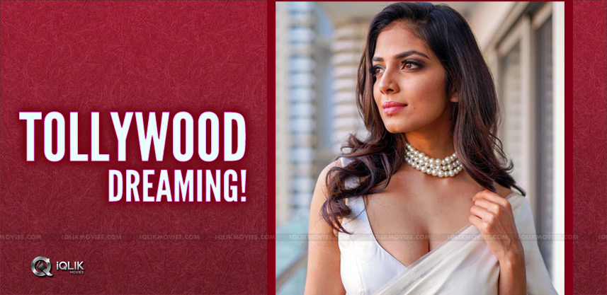 malavika-mohanan-tollywood-offers