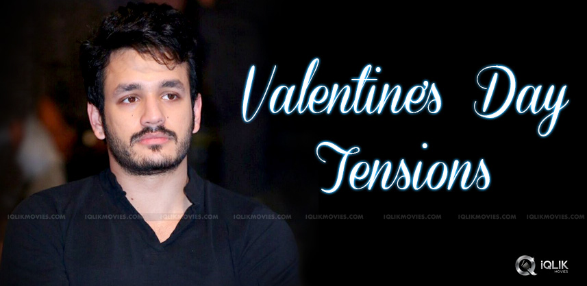 mr-majnu-may-release-for-valentines-day