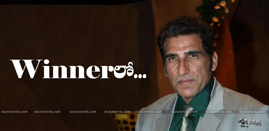 discussions-on-MukeshRishi-role-in-Winner
