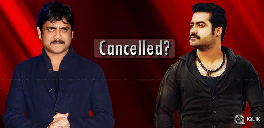 jr-ntr-nagarjuna-multi-starrer-cancelled