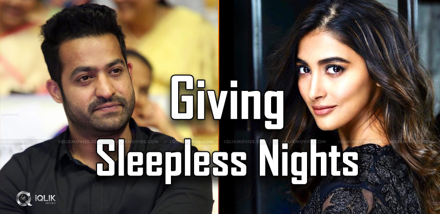 ntr-giving-sleepless-nights-pooja-hegde