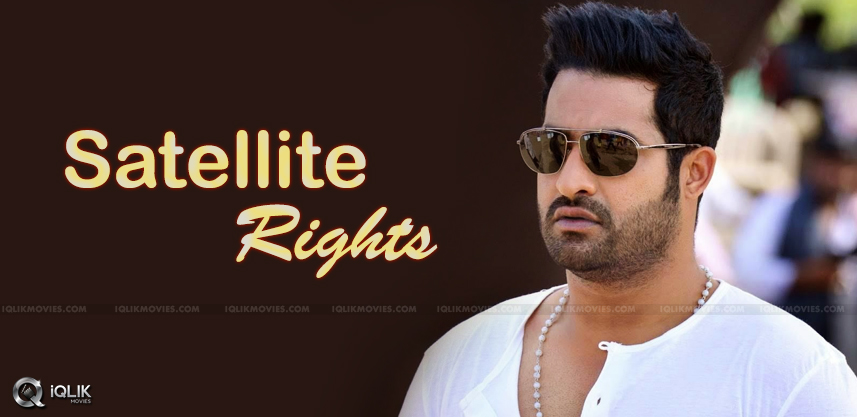 ntr-sukumar-movie-satellite-rights
