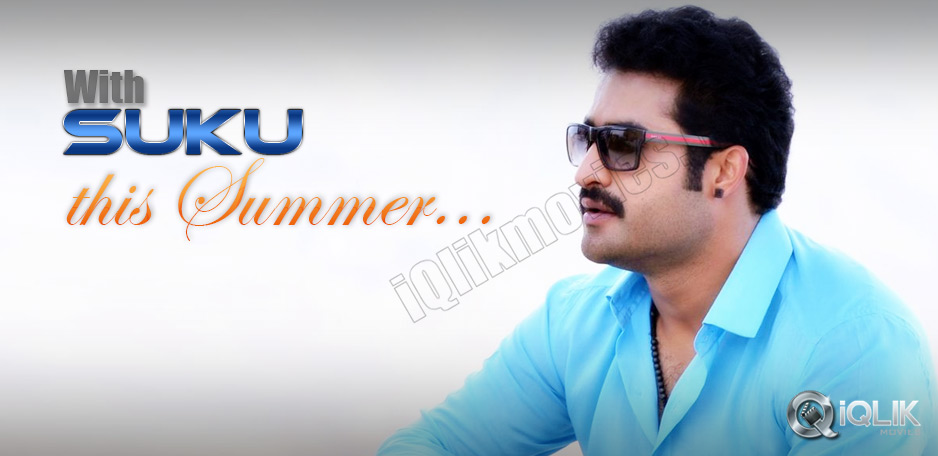 NTR-and-Sukumar-to-have-a-summer-start