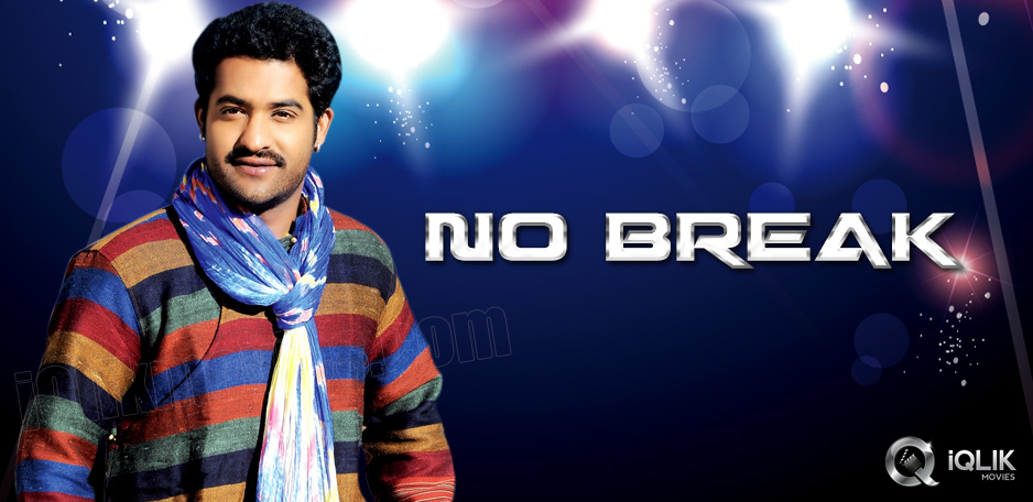 NTR-gearing-up-for-his-next-flick