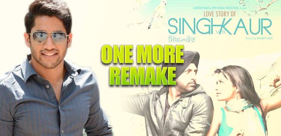 Singh-VS-Kaur-Remake