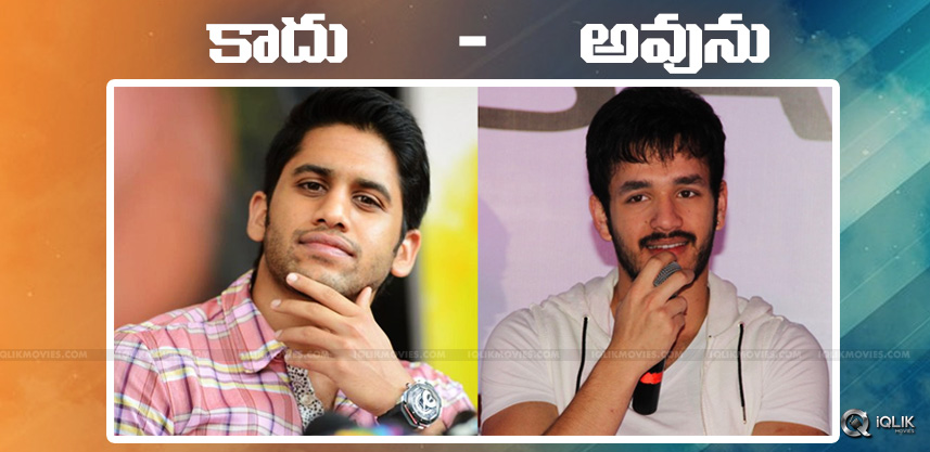 speculations-about-hero-akhil-love