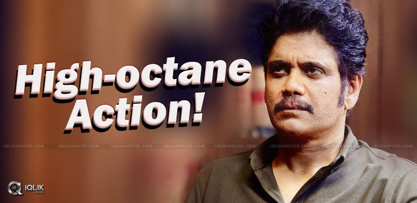 bollywood-action-directorabout-nagarjuna