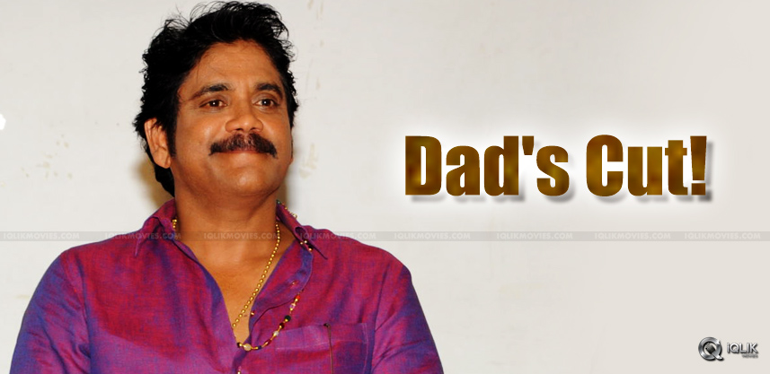 speculations-on-nagarjuna-suggested-cuts-for-akhil