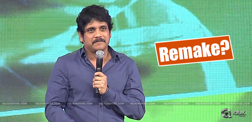 speculations-on-nagarjuna-acting-in-premam