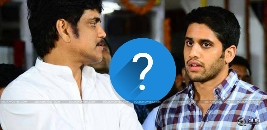 nagarjuna-naga-chaitanya-next-movie