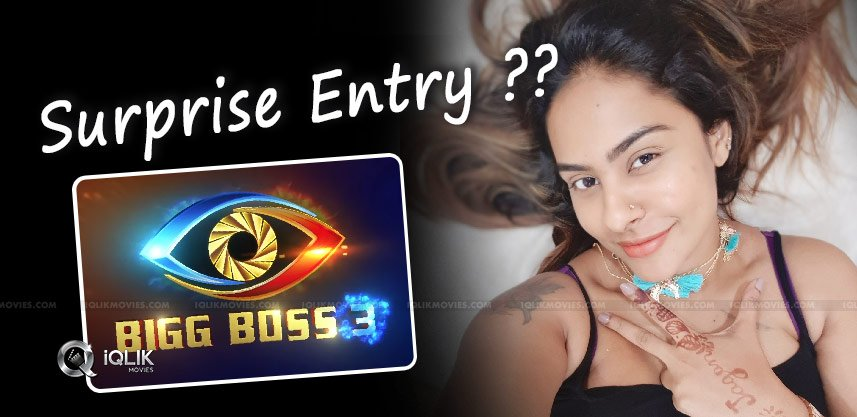 sri-reddy-entry-bigg-house