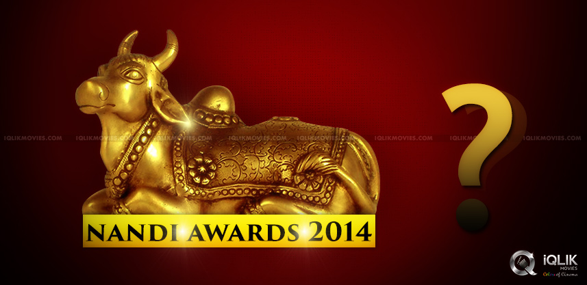 nandi-awards-event-in-vijayawada
