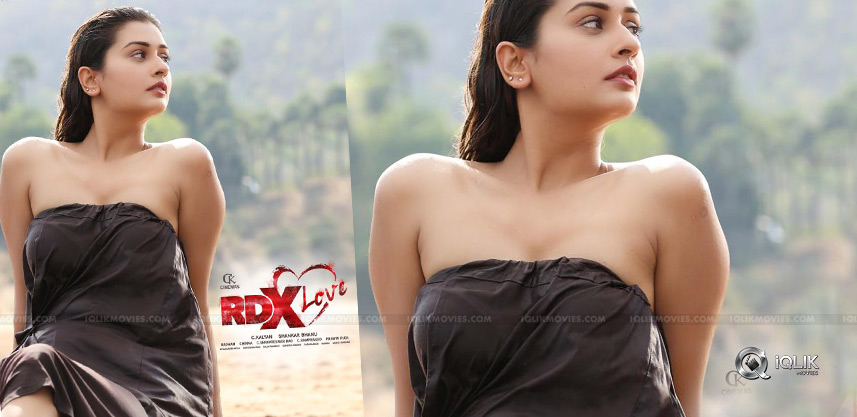 payal-rajput-rdx-look