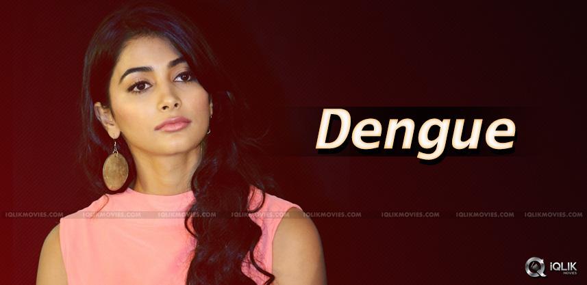 pooja-hegde-suffering-from-dengue