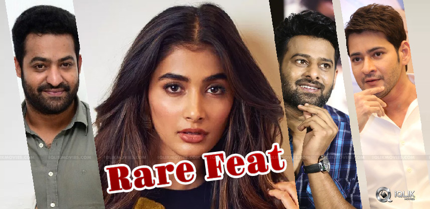 pooja-hegde-acted-with-star-heroes